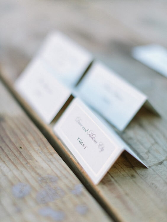 name cards for spring ice blue wedding